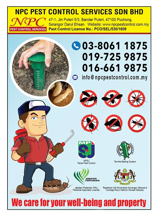 For All Pest Solutions Kindly Call Our Hotline