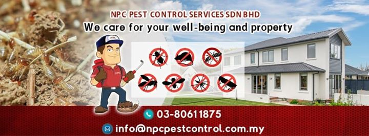 At Npc We Care For Win Win Solution