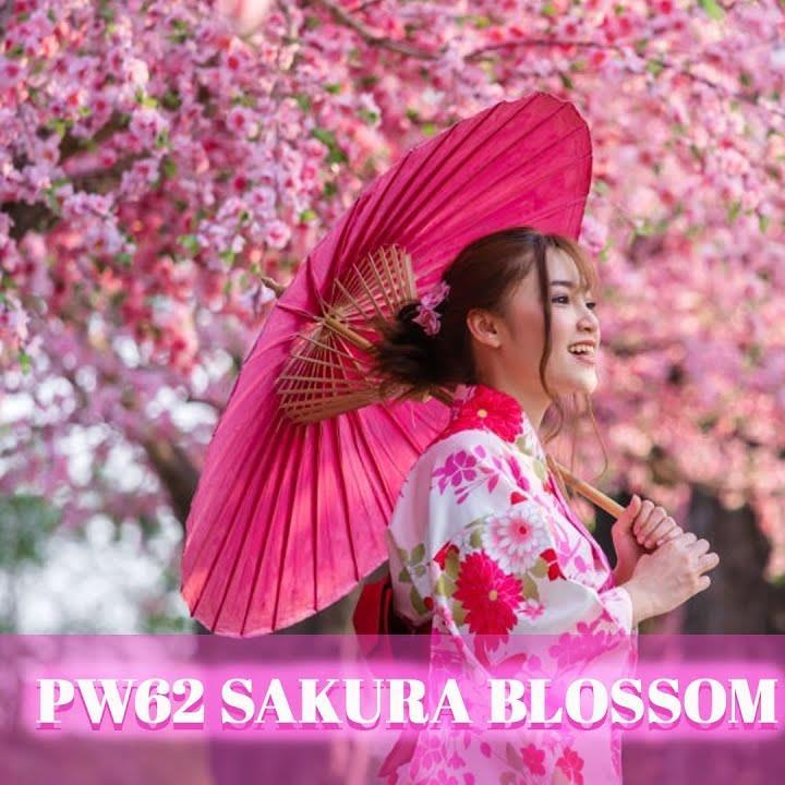 Inilah Sebab Kenapa Ramai Orang Pilih Sakura Blossom