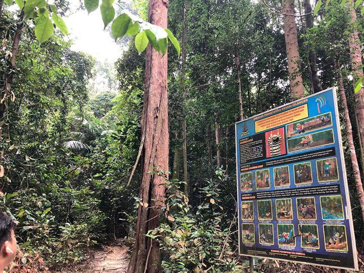 Tempat Hutan Simpan Boleh Melakukan Pelbagai Aktiviti Seperti