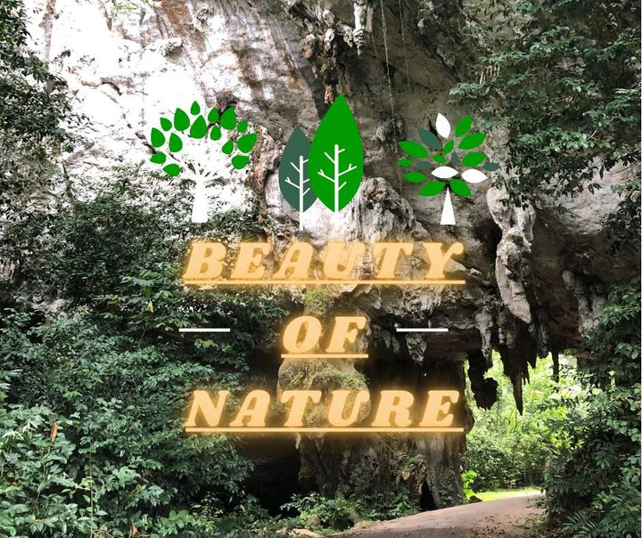 3d2n National Park (taman Negara) Full Board Package
